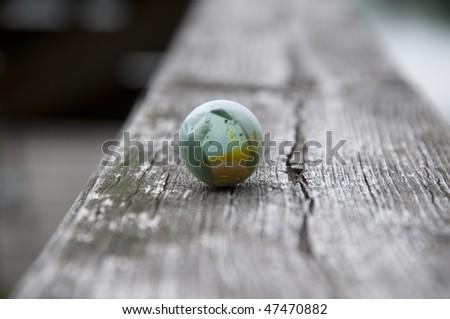 Egg of a bird - stock photo