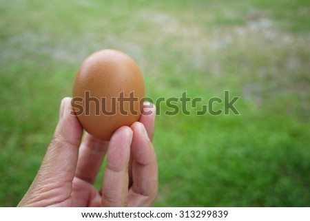 egg on hand , selective focus  , blurred background . - stock photo