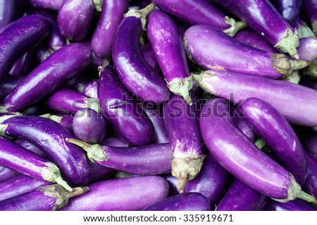 egg plants , selective focus and swallow DOF                                    - stock photo