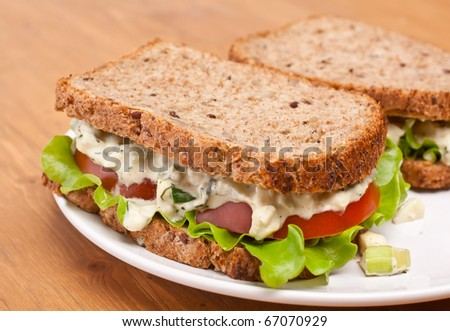 egg salad sandwiches on brown toasted bread - stock photo