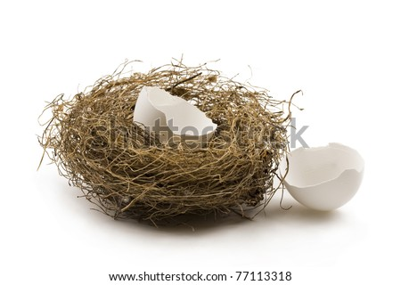 Egg shells in and out of nest. Concept of finance,broken personal savings,investment or retirement. - stock photo