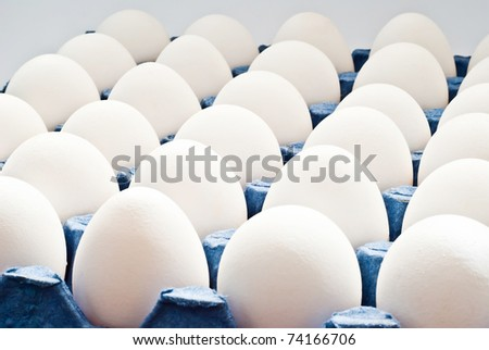 egg tray as a background - stock photo