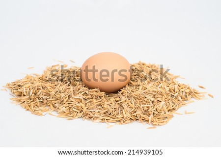 egg with husk