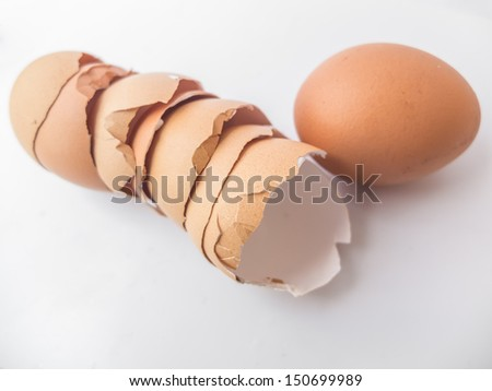 egg with row of eggshell on white background