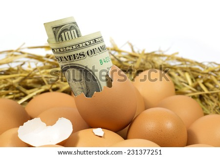 Egg Worth One Hundred American Dollars  - stock photo