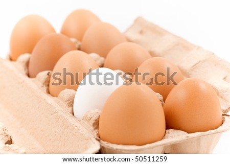 eggbox with 9 brown eggs and 1 white egg isolated on white - stock photo