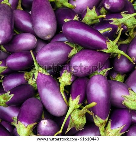 Eggplant purple from market - stock photo