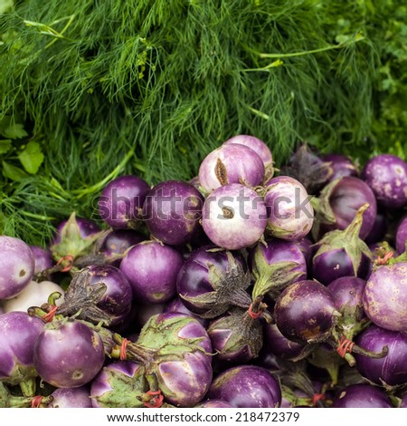 Eggplants and dill. Vegetables and herbs for sale at asian market. Organic food background - stock photo
