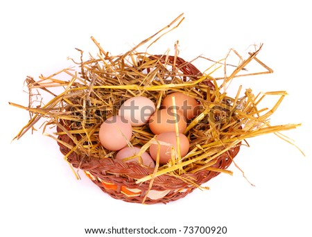 Eggs at hay in basket on white background.