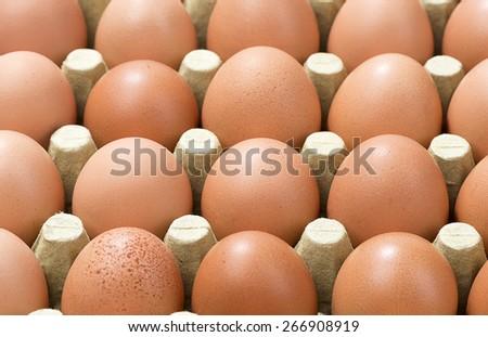 Eggs Background - stock photo