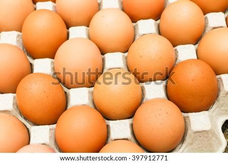 Eggs,Chicken eggs - stock photo