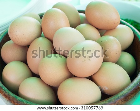 Eggs collection - stock photo