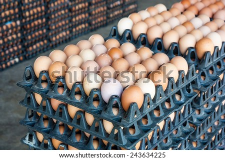 Eggs from chicken farm in the package - stock photo