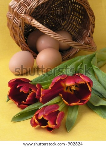Eggs in a basket and tulips