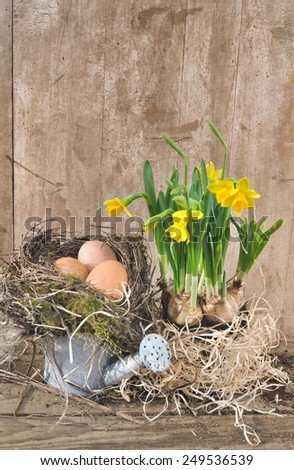 eggs in a nest on small watering can  with daffodils on wooden background - stock photo