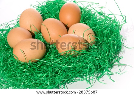 eggs in green grass isolated on the white background