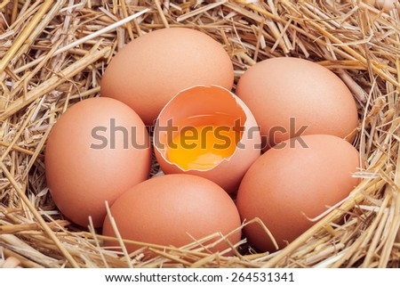 Eggs in hay, crude eggs and one broken egg with a yolk.
