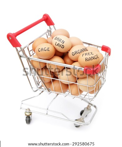 Eggs in shopping cart - stock photo