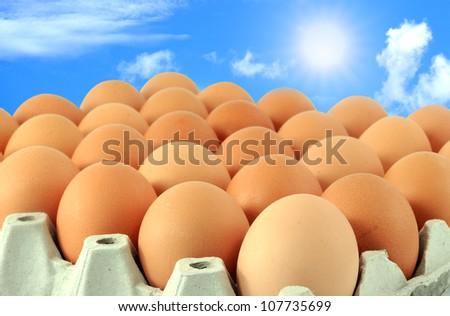 Eggs in the sky. - stock photo