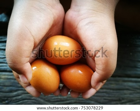 Eggs of chicken raw material for cooking