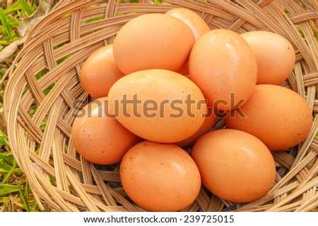 eggs on the basket - stock photo