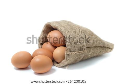eggs on white background - stock photo