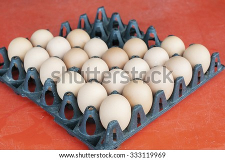 eggs panel - stock photo