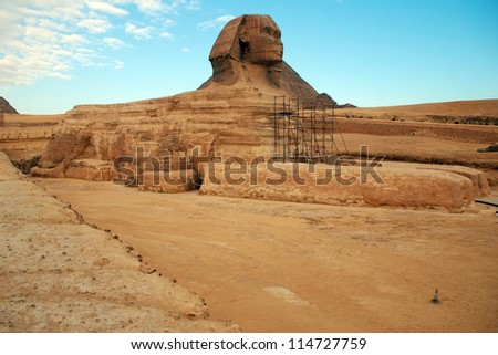 Egypt. Cairo. Giza. View of the fully unearthed Sphinx during the restoration works