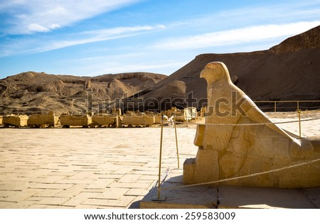 Egyptian god Chorus with a falcon's head - patron god of Upper Egypt. Funerary temple of Hatshepsut at Deir el-Bahri, Luxor. Architect - Senenmut. - stock photo