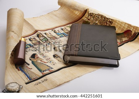 Egyptian papyrus in expanded form - stock photo