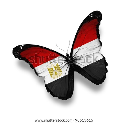 Egyption flag butterfly, isolated on white - stock photo