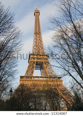 Eiffel tower framed with trees and lit with the late afternoon sun - stock photo