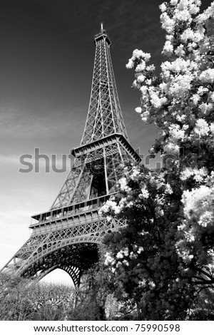 Eiffel Tower in black and white style, Paris, France