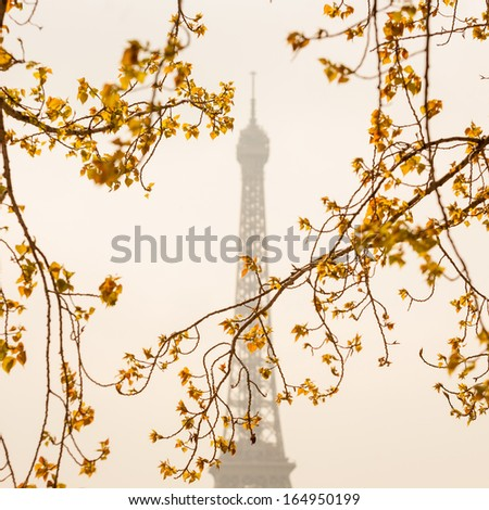 Eiffel Tower in France - stock photo