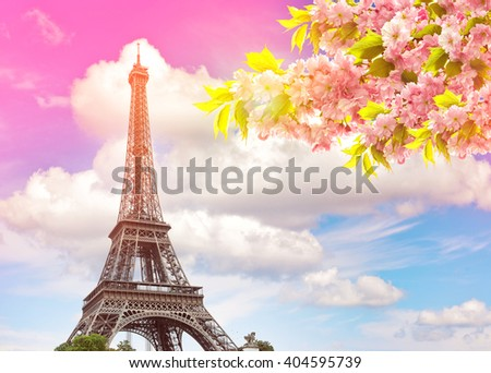 Eiffel Tower Paris against colorful blue sunset sky. Blossoming spring cherry tree. Vintage style toned picture - stock photo
