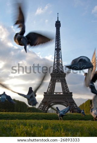 Eiffel Tower Pigeons - stock photo