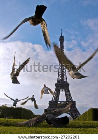 Eiffel Tower Pigeons - stock photo