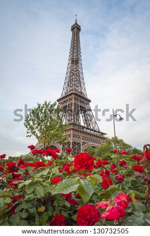 Eiffel Tower rising behind red roses, Paris, France - stock photo