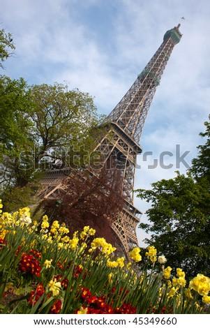 Eiffel Tower with flowers, Paris - stock photo