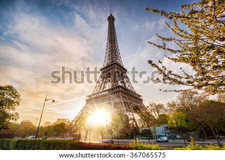 Eiffel Tower with spring tree in Paris, France - stock photo