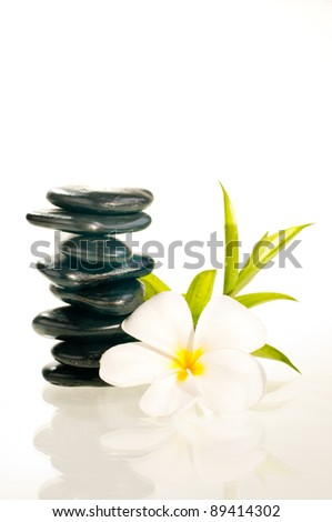 Eight balanced zen stones with white plumeria flower and bamboo plant over white