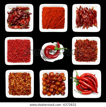 eight RED spices in WHITE square plates on BLACK background and one chilli pepper in sea shell with rough edges
