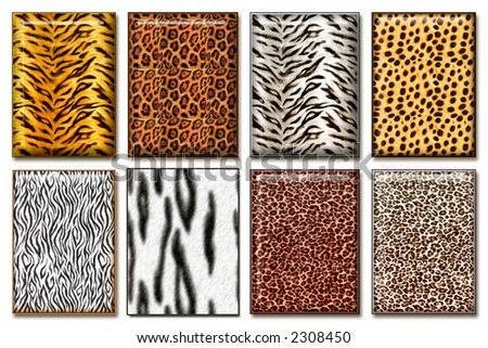 Eight wild African animal skin texture collections - stock photo