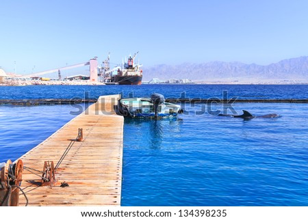 Eilat water area of the Red Sea - the moored cargo ships and boats and frolic dolphins nearby with Jordan mountains in background. - stock photo