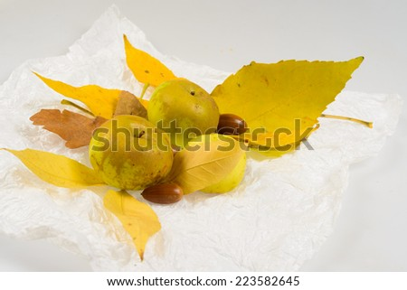 Ekibany of autumn leaves with apples and acorns - stock photo