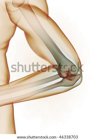 Elbow detail - stock photo