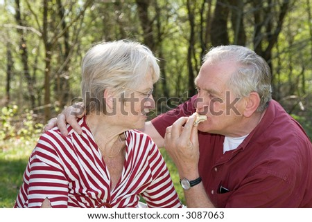 Elderly couple at a picnic in the forest - stock photo