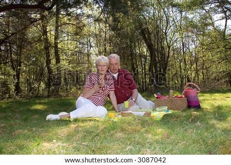 Elderly couple on a field having a picnic on a summerday - stock photo