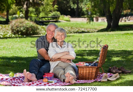 Elderly couple  picnicking in the garden - stock photo