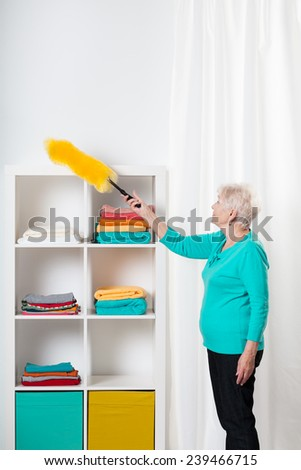 Elderly hardworking lady cleaning the sheves - stock photo
